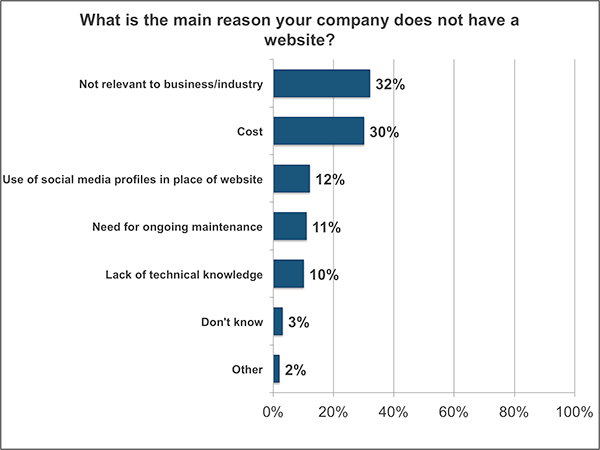 Graph, reasons small businesses don't have a website