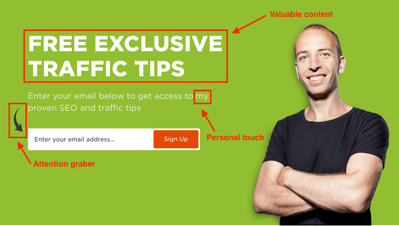 "Well-put CTA: ""Free Exclusive Traffic Tips"""