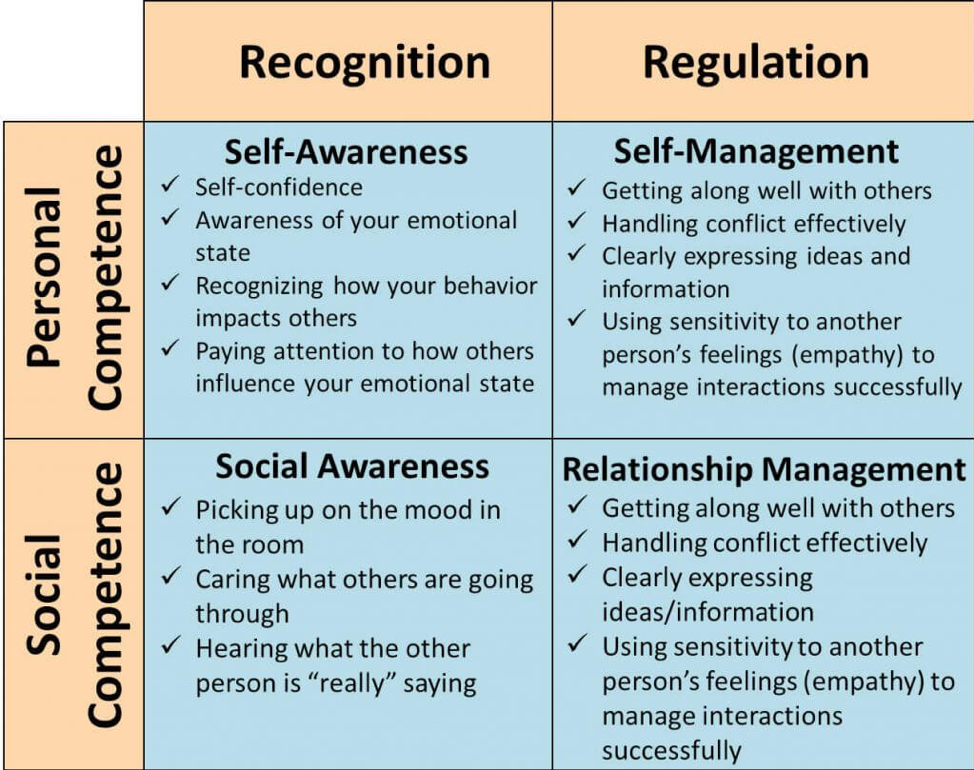 emotional strength diagarm recognition regulation social personal competence