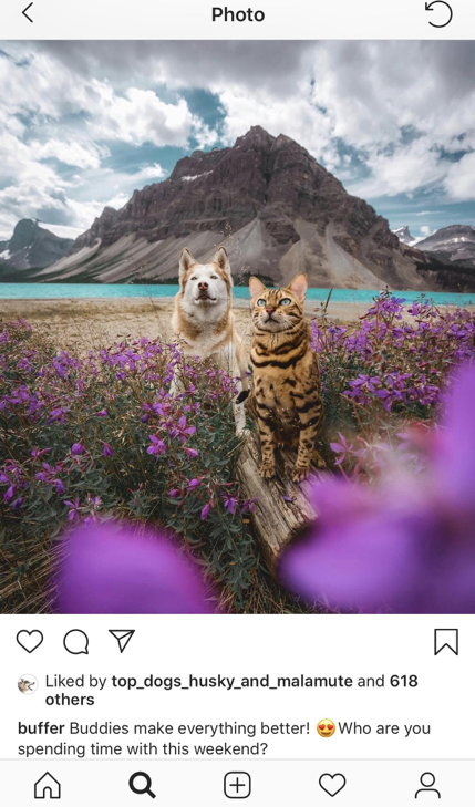 Buffer Instagram post