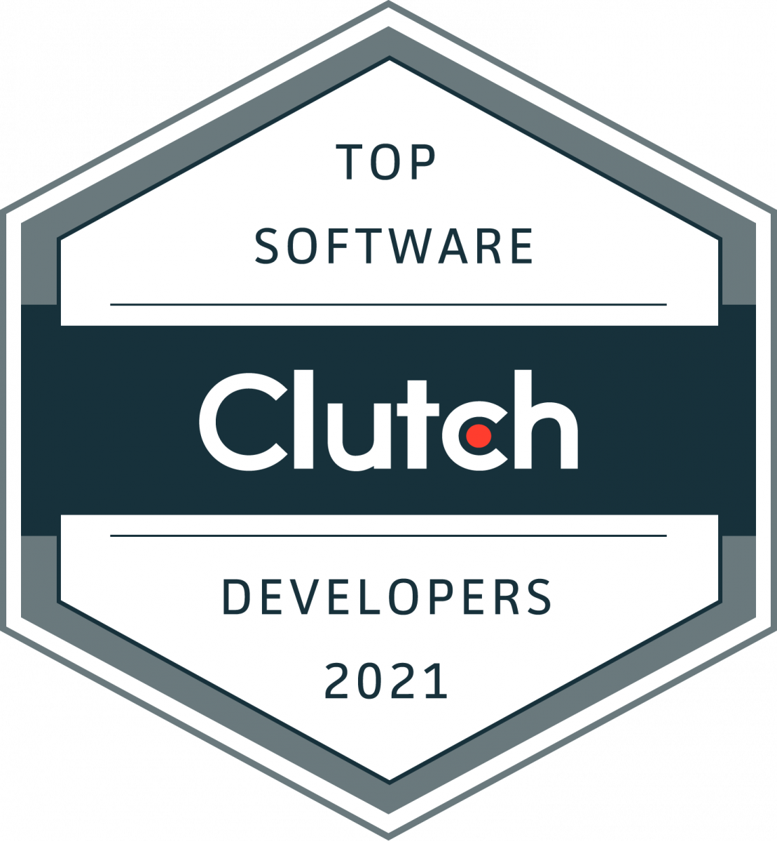 Top Software Developers 2021