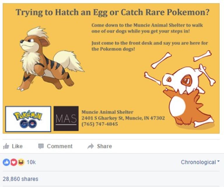 Muncie Animal Shelter Pokemon Go