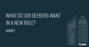What Do Job Seekers Want in a New Role?