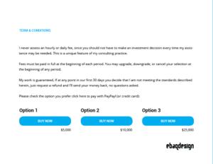 logo design proposal pricing options