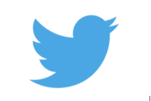 Twitter Blue Bird Brand Mark