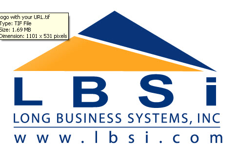 Long Business Systems, Inc. Logo
