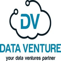 Data Venture Solutions Ltd. logo