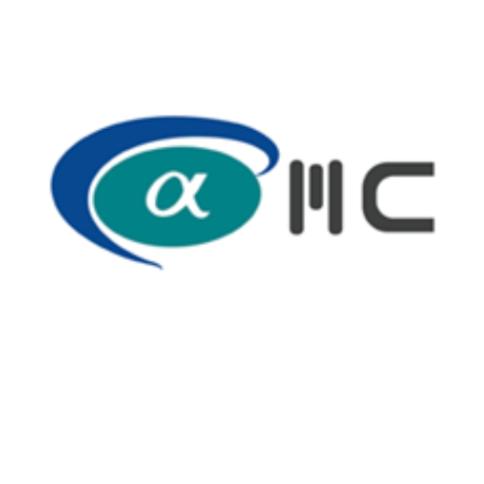Alpha Equity Management Consultancy Logo
