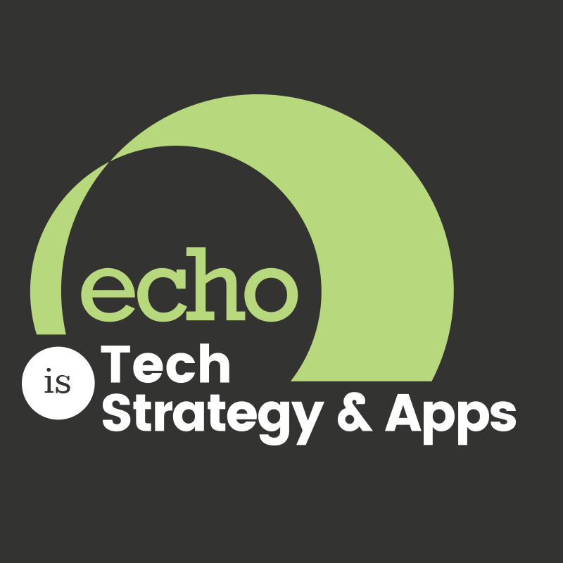 Echo Interaction Group Logo