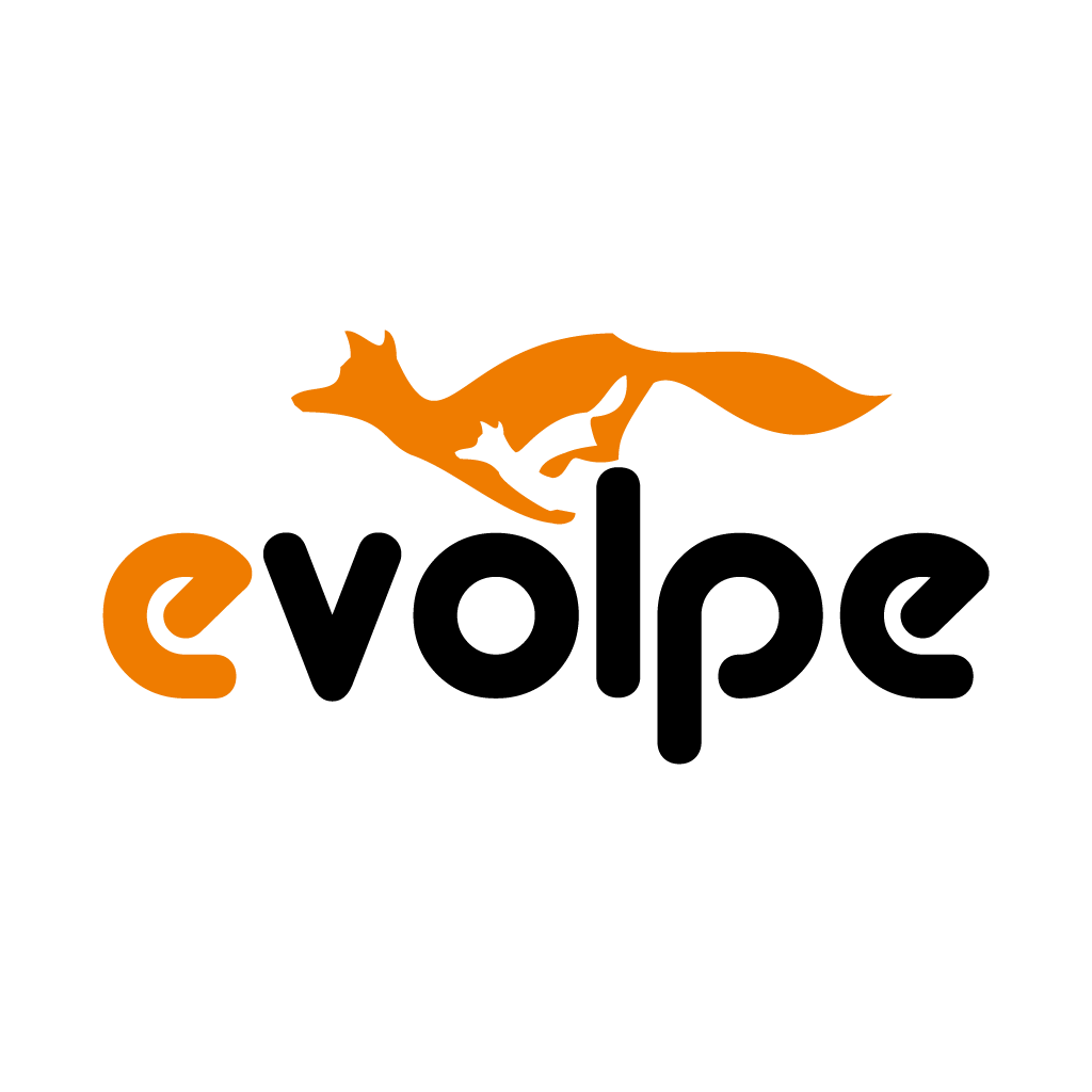eVolpe Consulting Group Logo