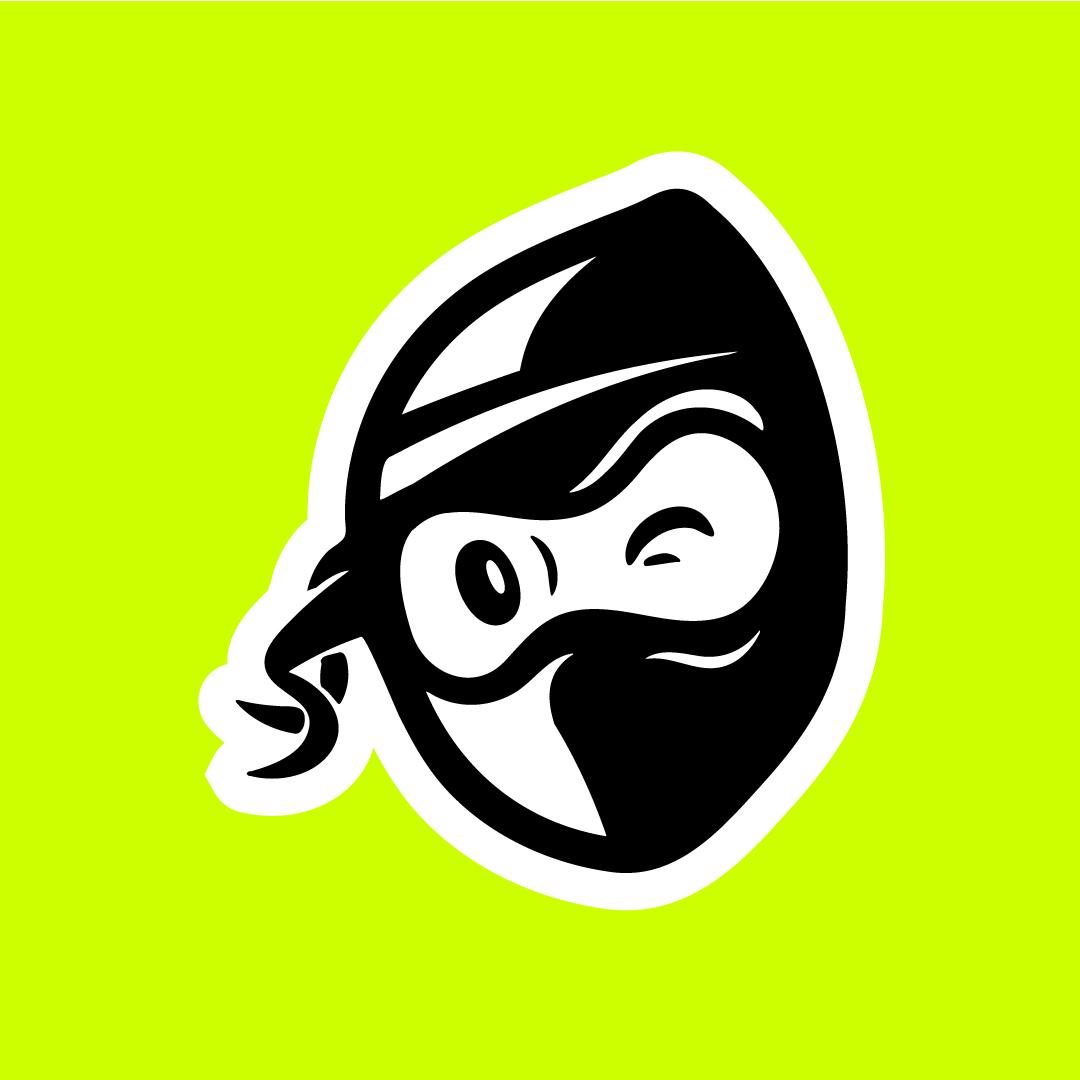MailNinja Logo