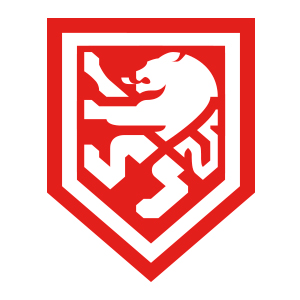 LION Branding Logo
