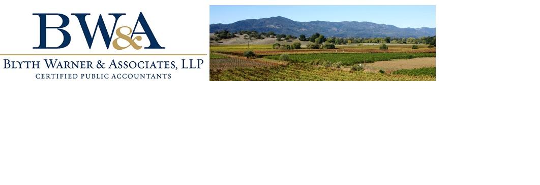 Blyth Warner & Associates, LLP Logo