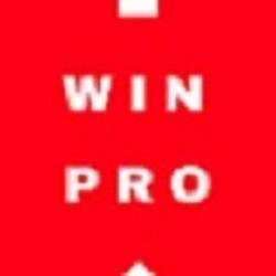 Win-Pro Consultancy Pte Ltd Logo