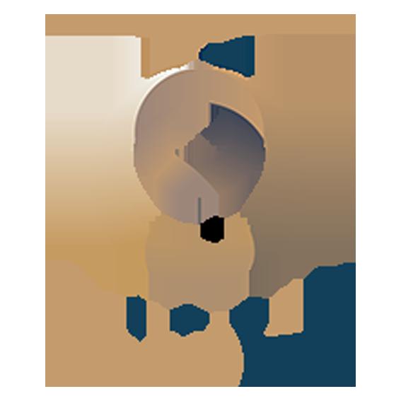 Astrolab agency Logo