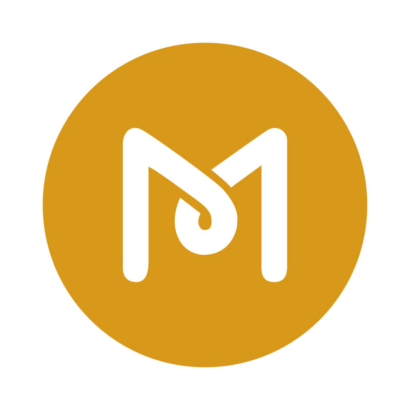 MS Web Designer Logo