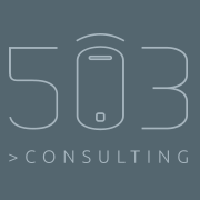 503 Consulting