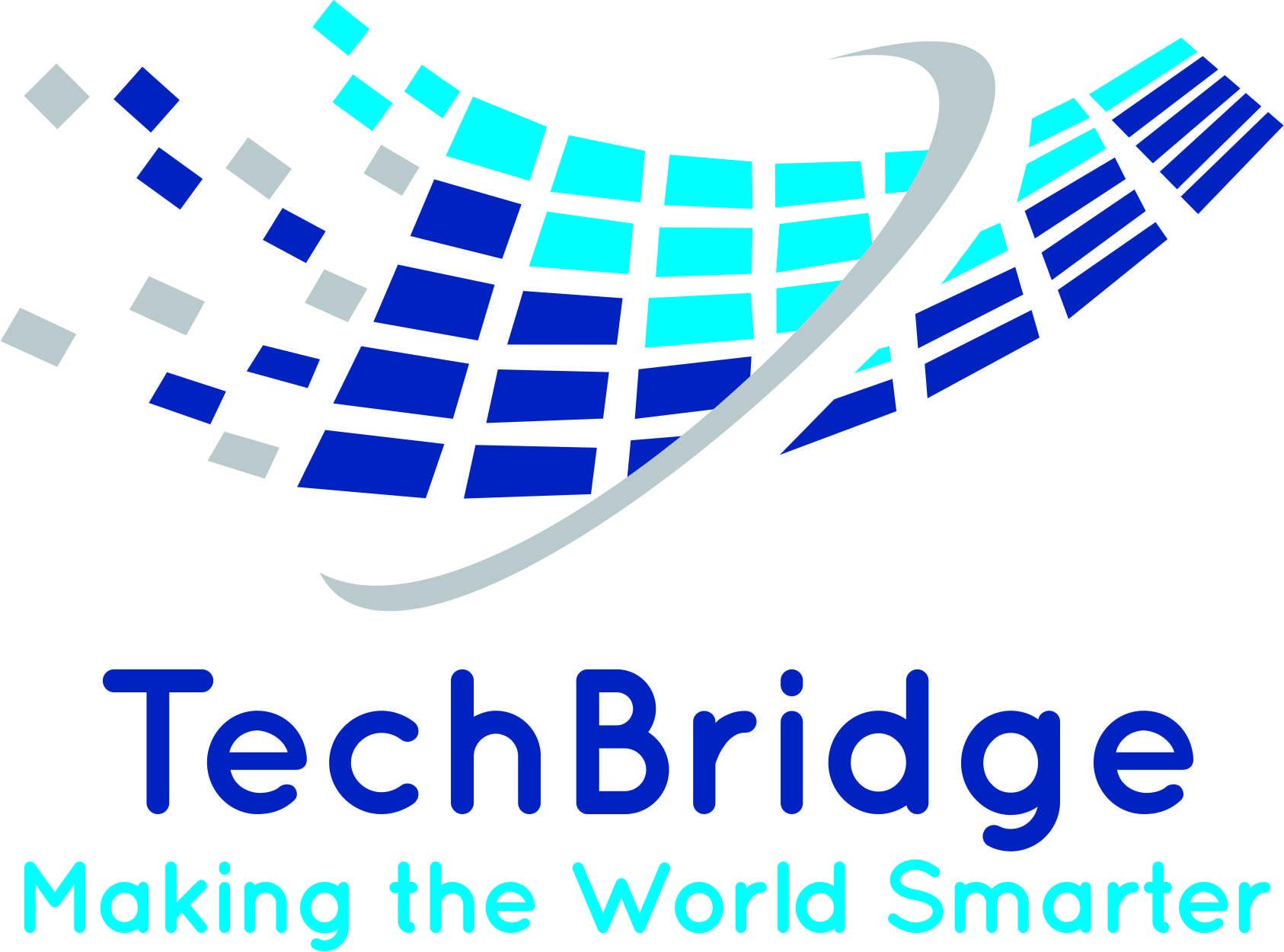 TechBridge Consultancy Services LLP Logo