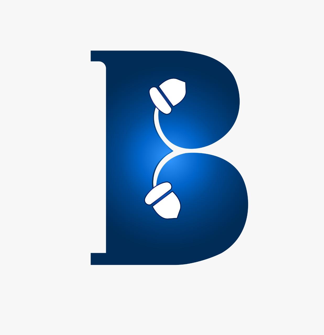 Brandingnuts Logo