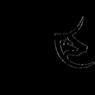 LupoToro Logo