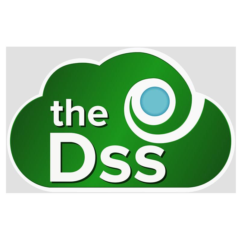 the Dss Logo