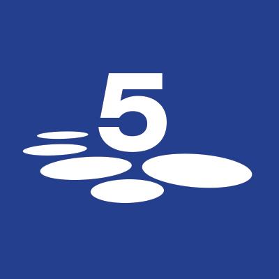 5 Stones Media logo