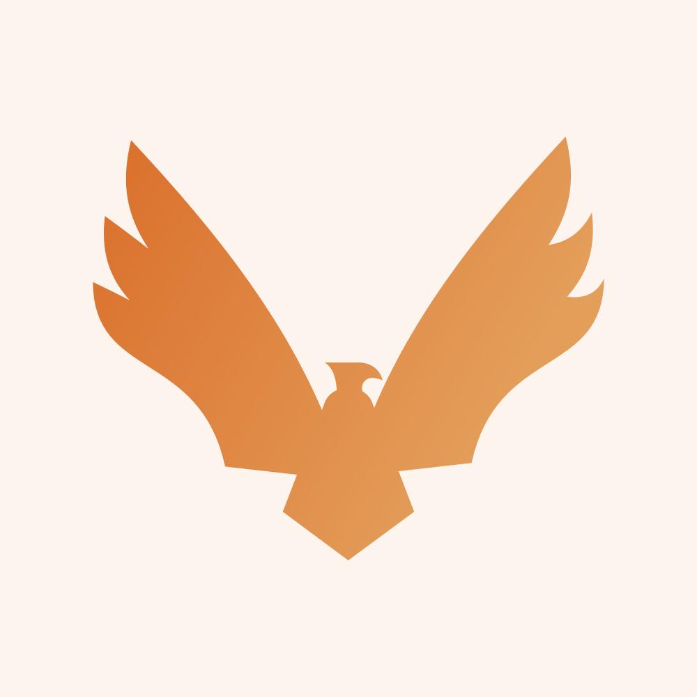 Conversion Hawks Logo