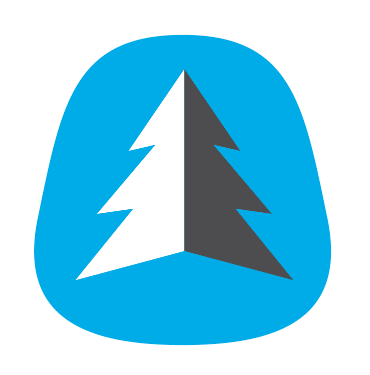 Bonehook Logo