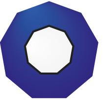 Nonagon Chartered Accountants Logo
