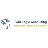 Twin Eagle Consulting LLC Logo