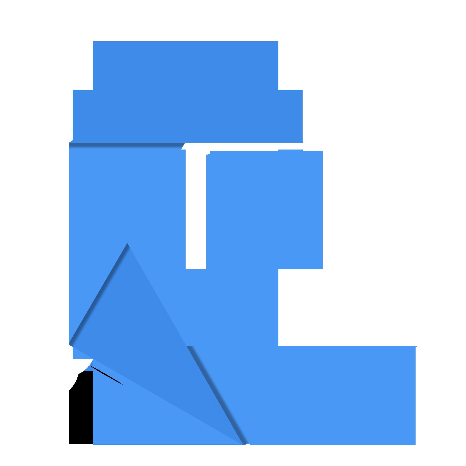 PicsellGlobal Logo