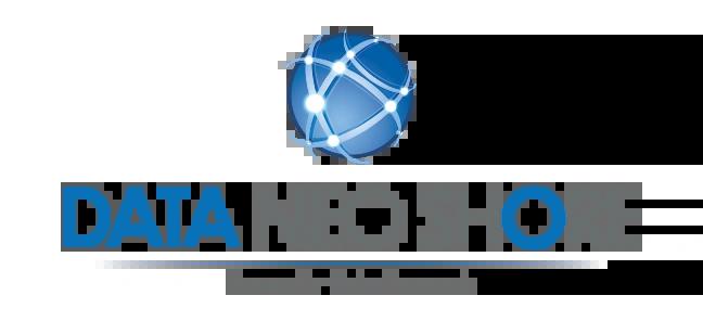 DataNeoShore Logo