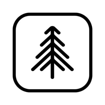 Black Pine Digital Logo