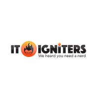 IT Igniters Logo