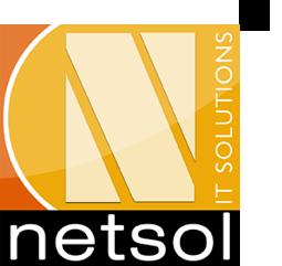 Netsol IT Solutions Pvt. Ltd. Logo