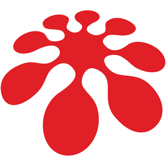 Arkusnexus Logo