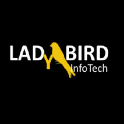 LadyBird InfoTech, LLC. Logo