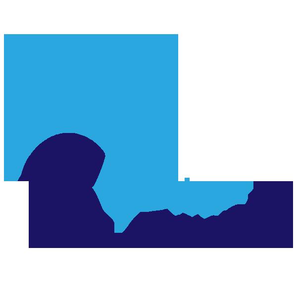 bitsCrunch Logo