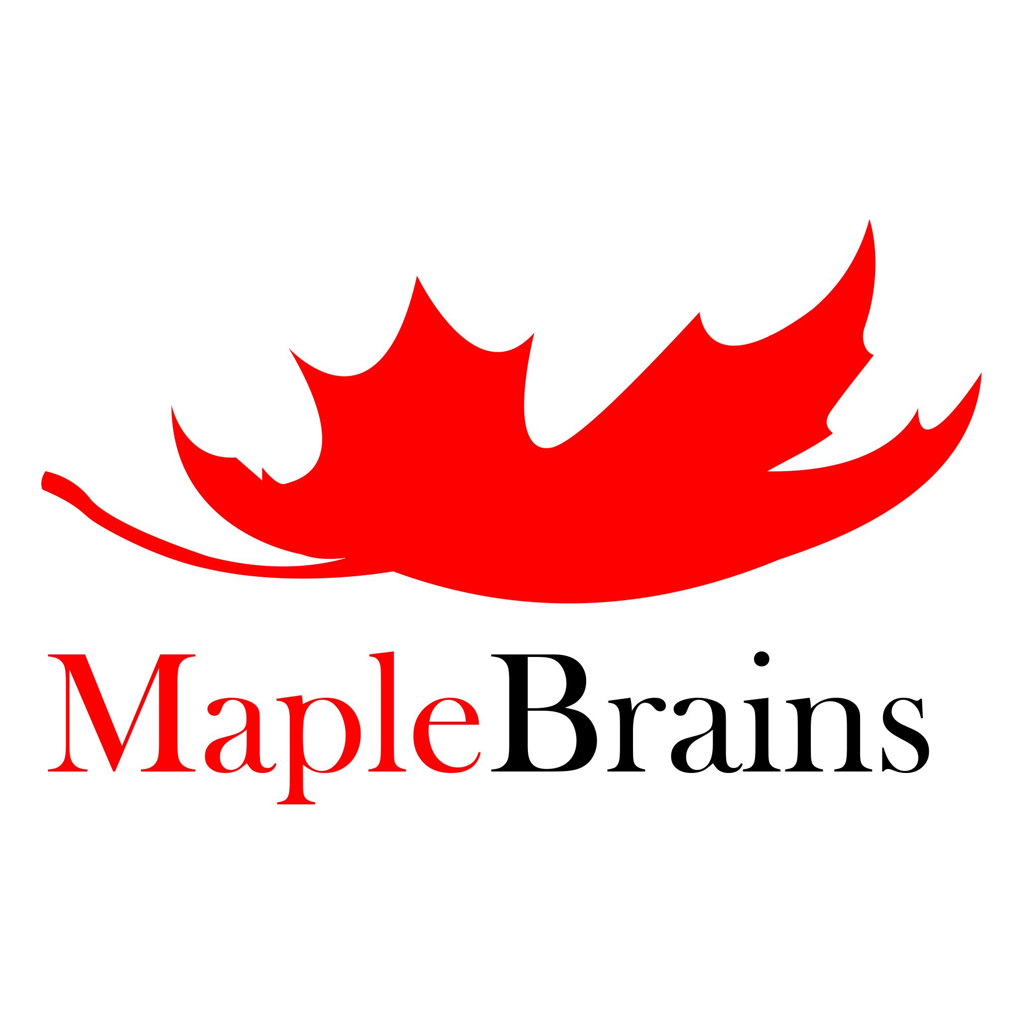 Maplebrains Technologies Inc Logo
