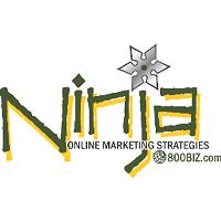 800biz logo