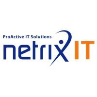 Netrix IT Logo