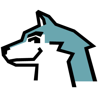 Web Wolf Logo
