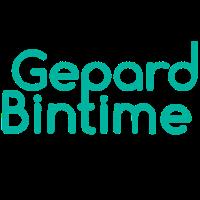 Gepard Bintime Logo