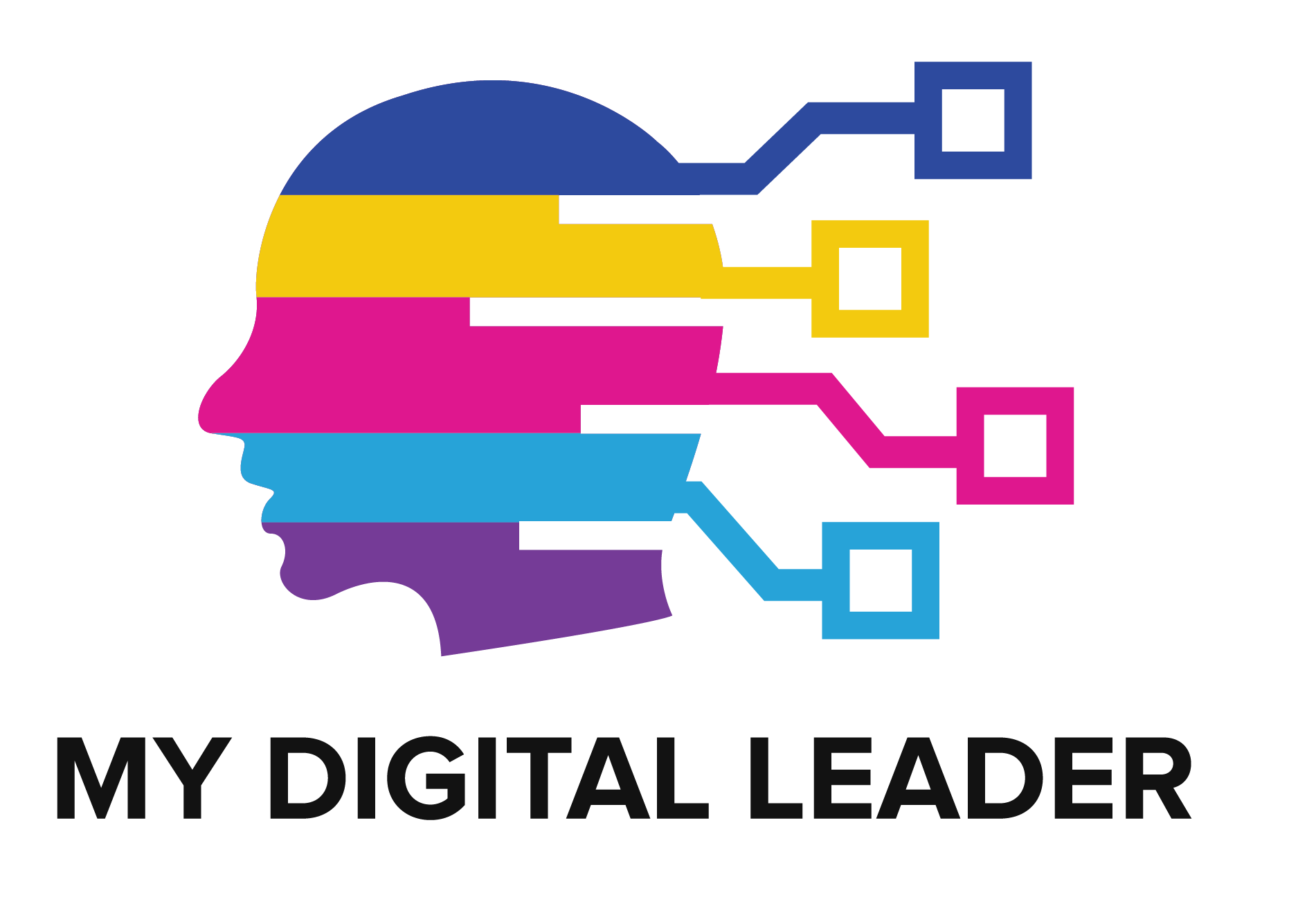 My Digital Leader Logo