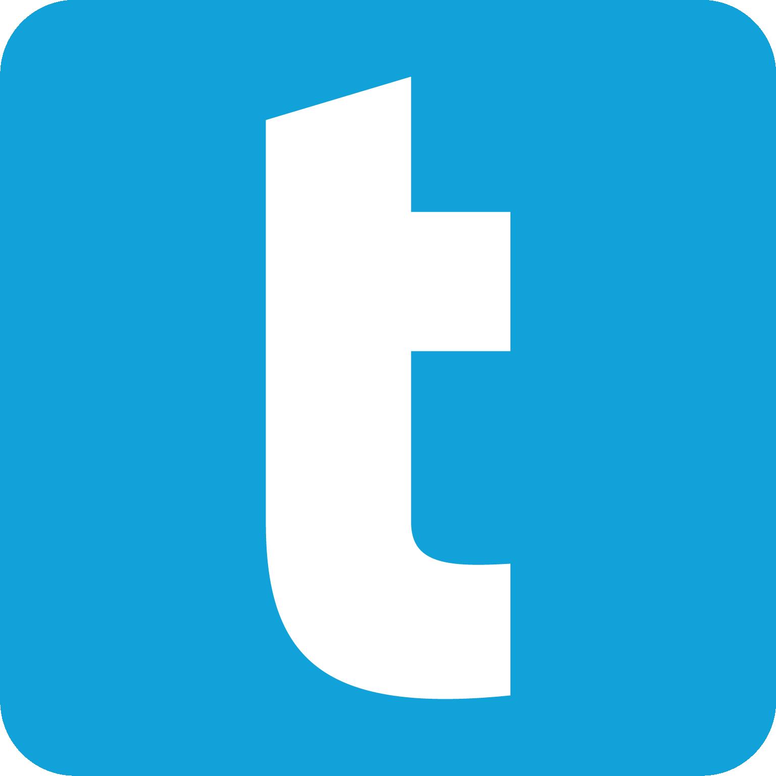 Turtseo Logo