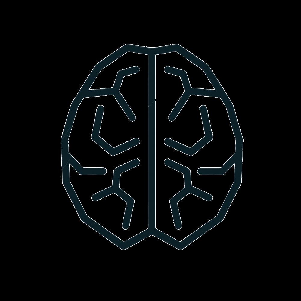 eCom Maniacs Logo