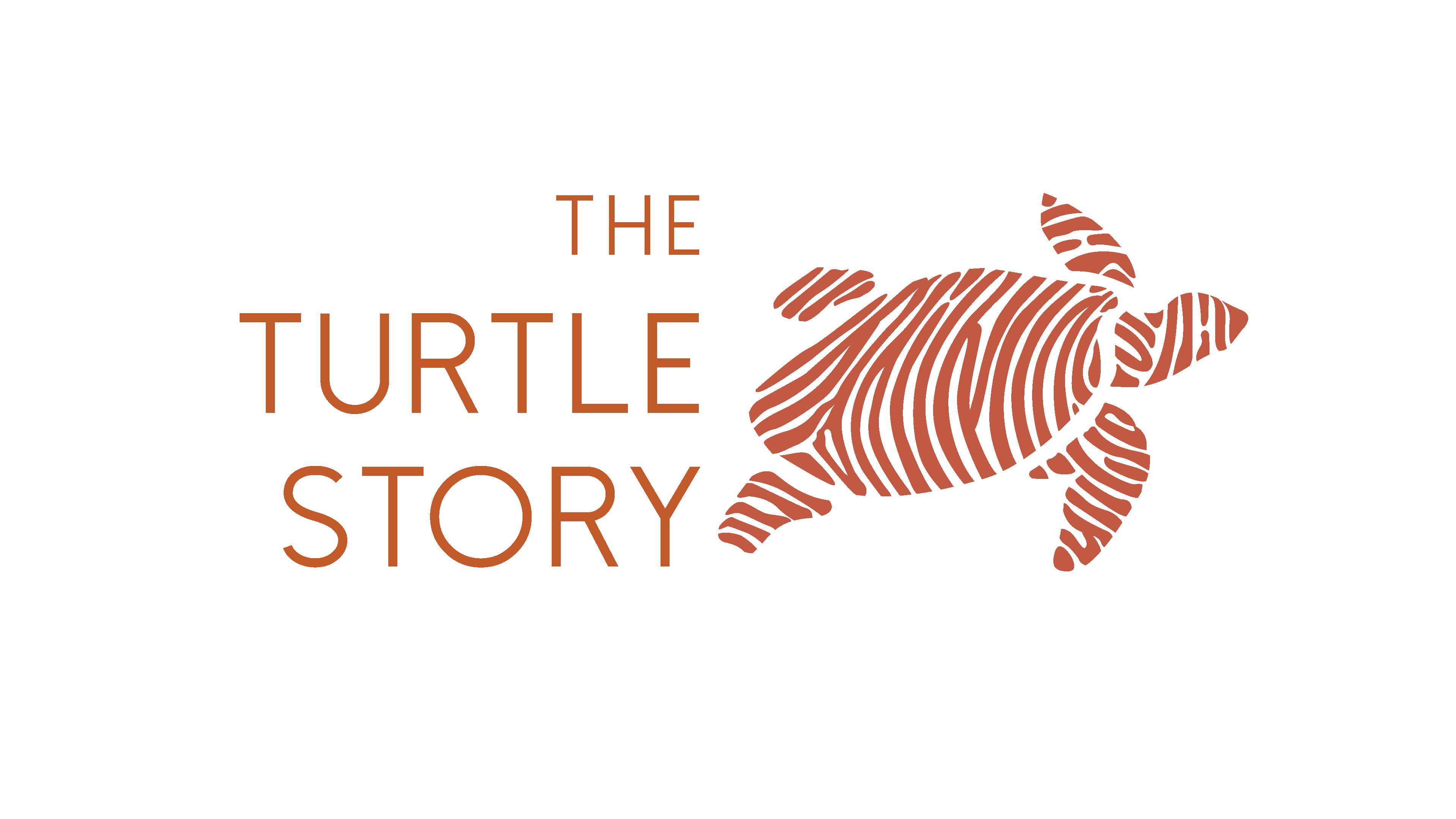 The Turtle Story Logo