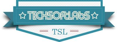 Tech Soft Labs Logo