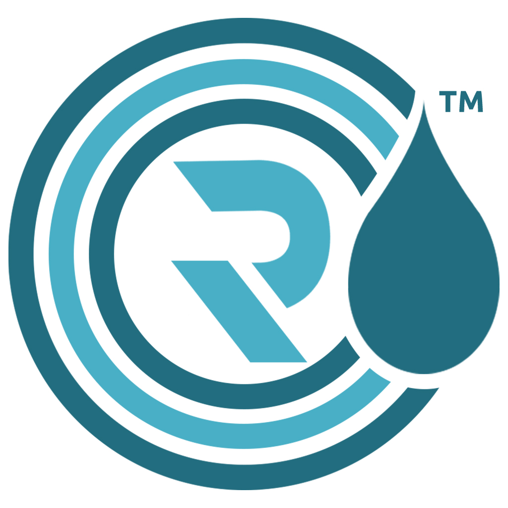 Rain Infotech Private Limited Logo