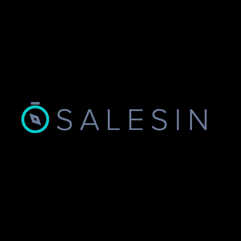 Salesin.io Logo